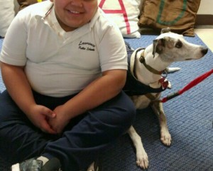 Therapy dog with SES student